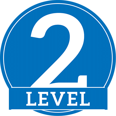 Image result for Level 2