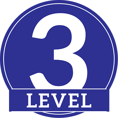 Image result for Level 3